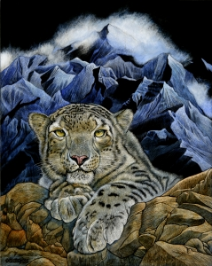 Wildcat Series: Snow Leopard