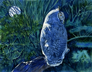 Night Hunter (Great Horned Owl)